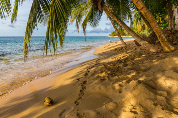 Costa Rica Playa Punta Uva