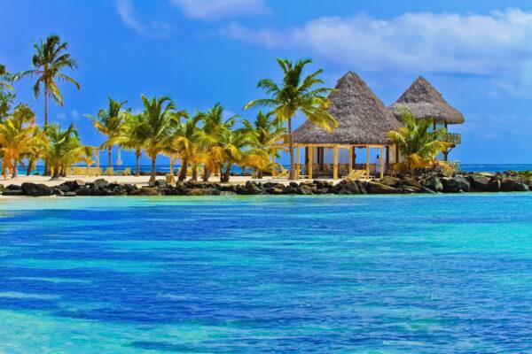 Dom Rep Punta Cana Strand Dschungel