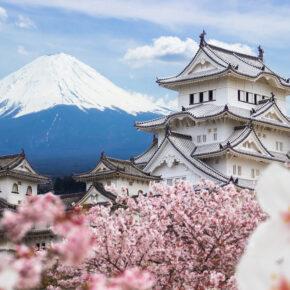 Von skurril bis idyllisch: Die ultimativen Japan Tipps für Eure Reise