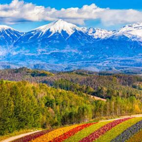 Hokkaido Reisetipps: Entdeckt die japanische Nordinsel