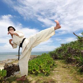 Japan Okinawa Karate