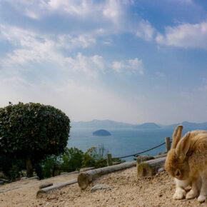 Japan Okunoshima Hase Landschaft