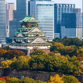 Japan Osaka Castle Skyline