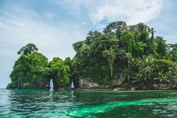 Panama Bocas del Toro Vogelinsel