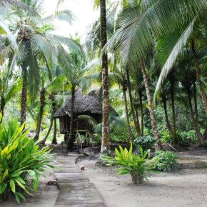 Panama Hütte Bocas del Toro