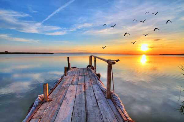 Sanfter Tourismus Ökotourismus Meer Vögel