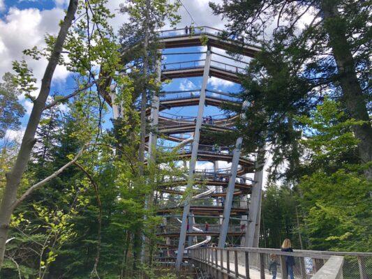 Schwarzwald Baumwipfelpfad Bad Wildbad