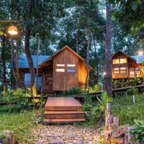 Thailand Holzhütte Regenwald