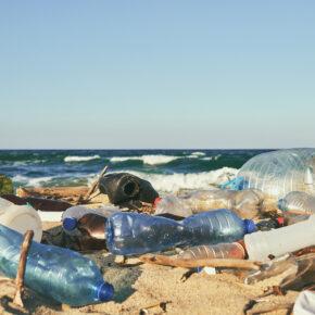 Sanfter Tourismus Ökotourismus Umweltverschmutzung Müll Strand