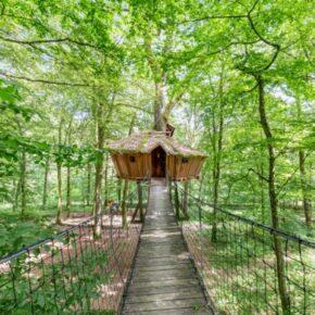 Kurios Übernachten: 2 Tage im Baumhaus in Frankreich mit Frühstück nur 56€