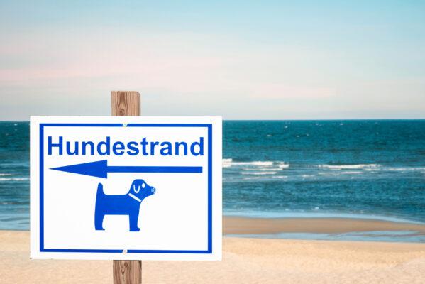 Deutschland Sylt Hundestrand