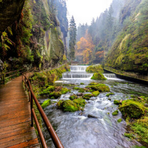 Deutschland: Die Top 10 der schönsten Nationalparks