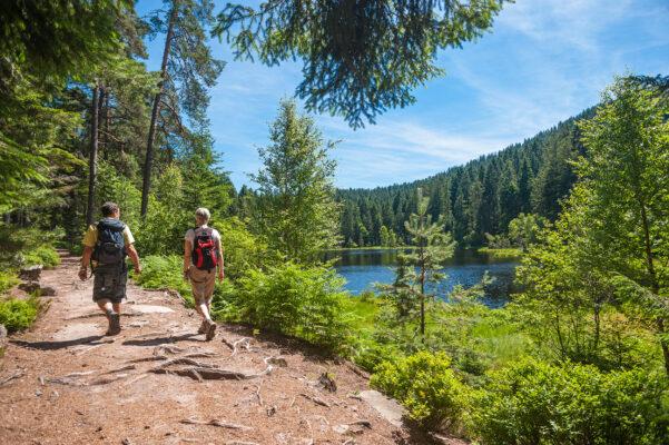 Schwarzwald Wandern See