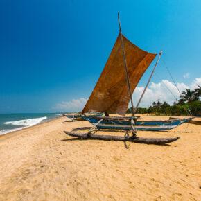 Sri Lanka Negombo Strand