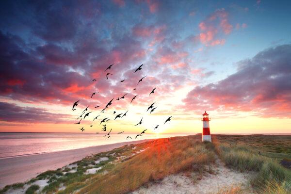 Sylt Leuchtturm Sonnenuntergang