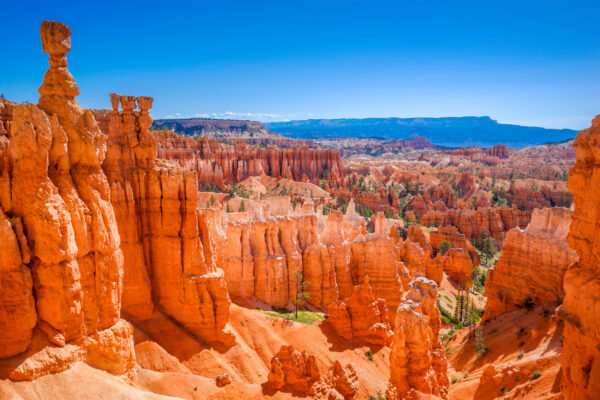 USA Bryce Canyon Landschaft