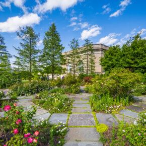 USA Washington DC Botanischer Garten