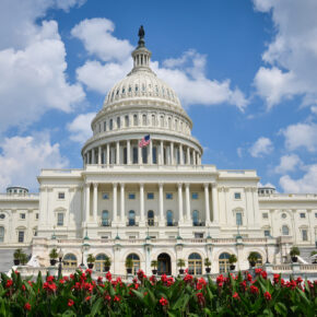 USA Washington DC Kapitol
