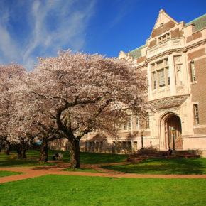 USA Seattle Universität
