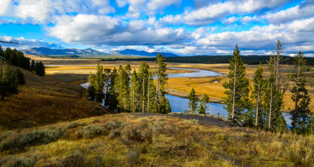 USA Yellowstone Nationalpark Fluss