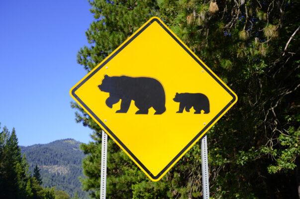 USA Yosemite Nationalpark Bären Schild
