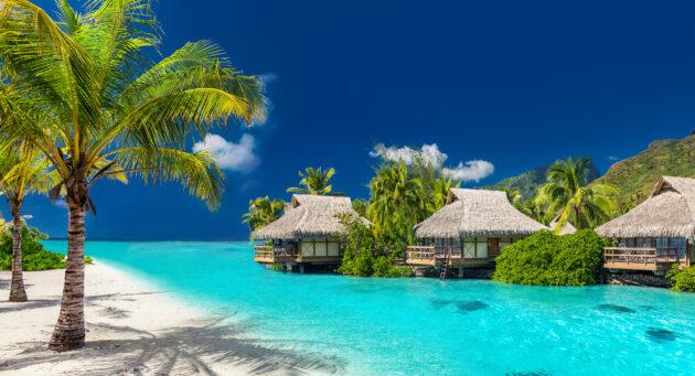 Bora Bora Palmen Bungalows
