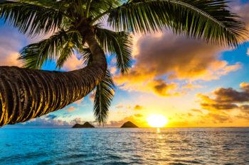 Flug-Kombi: Flüge nach Budapest & Hawaii in 1 Trip nur 412€