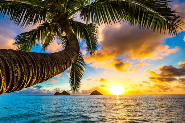 Hawaii Lanikai