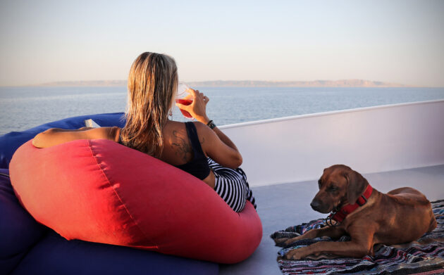 Kreuzfahrt Hund Frau