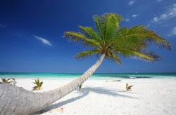 Luxusurlaub in Mexiko: 12 Tage im TOP 5* Resort mit All Inclusive, Flug & Transfer nur 1.21...