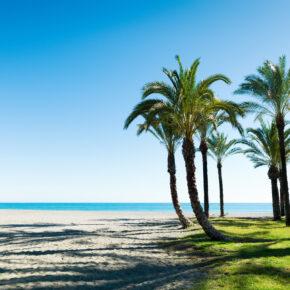 Costa de la Luz: 7 Tage im TOP 4.5* Strandhotel mit Frühstück, Transfer, Flug & Zug für 278€
