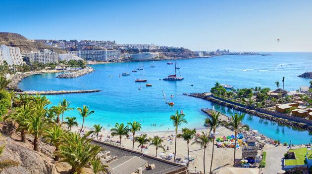 Spanien Gran Canaria Anfi Beach Palmen