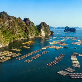 Vietnam Halong Bucht Schwimmendes Dorf