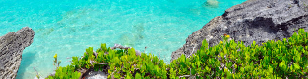 Bermuda Strand Meer Felsen Panorama