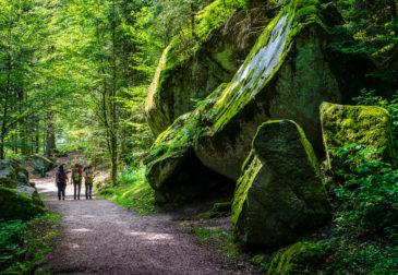 Wochenende im Schwarzwald: 3 Tage im 4* Premium-Hotel mit Frühstück & Wellness ab 138€