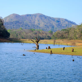 Indien Kerala Thekkady See
