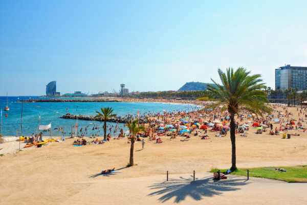 Spanien Barcelona Beach Palmen
