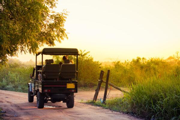 Sri Lanka Jeep