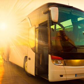 Flixbus: Fernbus-Anbieter fährt wieder – ab sofort