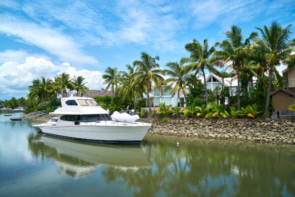 Fiji Yacht Palmen