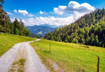 Nachhaltiger Kurztrip: 4 Tage auf TOP Biobauernhof in der Steiermark mit Frühstück für 194€