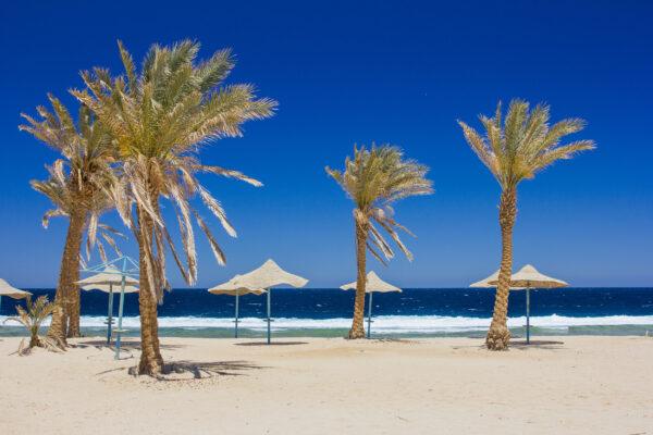 Tunesien Strand mit Palmen