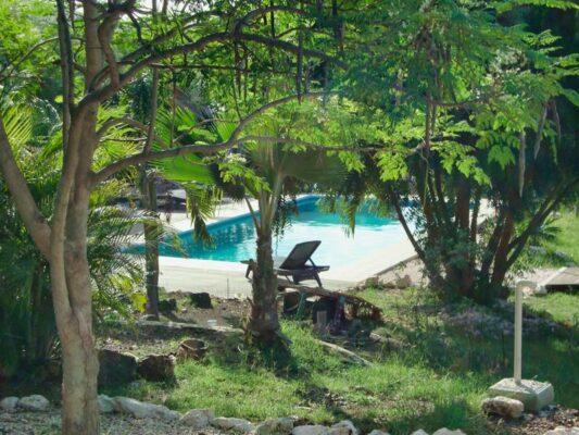 Don Genaro Appartments Garten Pool