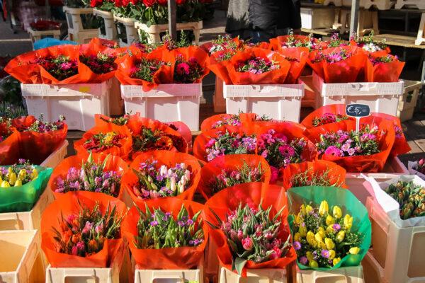 Niederlande Utrecht Blumenmarkt