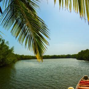 6 Tage Gambia im TOP 4* Hotel inkl. Frühstück, Flug, Transfer & Zug nur 405€