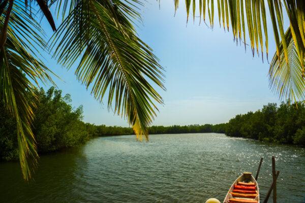 Gambia Fluss Makasutu