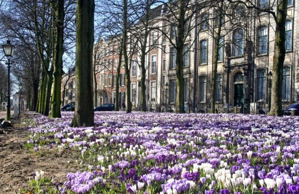 Niederlande Den Haag Lange Voorhout