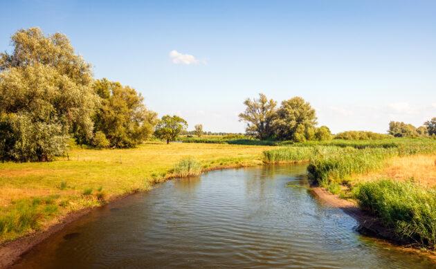 Niederlande Nationalpark de Biesbosch