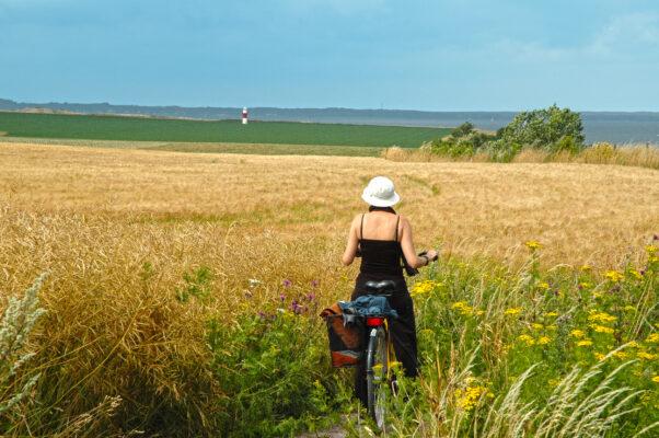 Schweden Insel Ven Fahrradtour