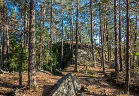 Schweden Tiveden Nationalpark